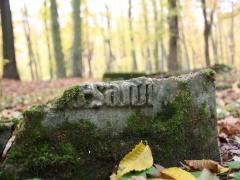 Przepiękne Lubuskie. Przełazy i okolice.  Łagów Lubuski. Stary cmentarz.